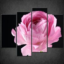 CLOSE UP PINK PEONY FLOWER CASCADE CANVAS WALL ART PRINT PICTURE READY TO HANG