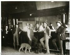Old Time Saloon Beer Drinking Bobcat and Poodle In Bar Vintage Saloon Wildcat