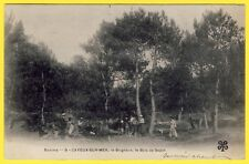 cpa 80 - CAYEUX sur MER (Somme) Le Brighton PIQUE NIQUE au Bois de SAPIN Animée