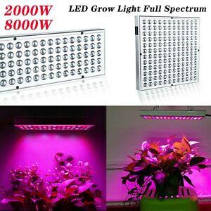LED Pflanzenlampe VollSpektrum Innen Anzucht Hydrokultur Blumen  Wachstumleuchte