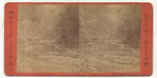 WATKINS GLEN NY, Amphitheatre, Antique New York Woodward Stereoview Card