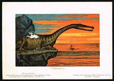 1900 Nothosaurus Dinosaur, Triassic Period Prehistoric Animal, Antique Print