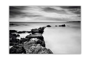 Black and White Rocky Coast in Summer Landscape Poster Print Wall Art Pictures