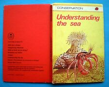 Understanding The Sea Ladybird vintage book sea nature gull jellyfish crab ocean
