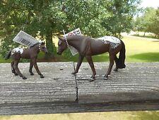 APPALOOSA HORSE FAMILY by Safari Ltd/toy/horse/154305/154605