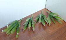 4 Artificial Blooming Cactus Plastic Grass Succulents Landscape