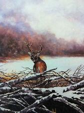 """Deer""""Winter's Cover"""" ltd ed Print,signed/numbered frame"""