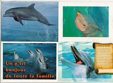 Lot 4 cartes postales DAUPHIN DOLPHIN 2