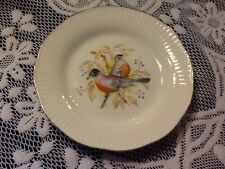 More details for queens staffordshire fine bone china tea plate
