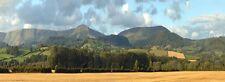 "ID 242N Backscenes N Gauge 'Harvest Hills' 2 x 9""x 60"" Rolls in Tube -T48 Post"