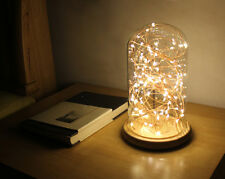 Gift LED Firework Glass Cover Wood Base Touch Switch Table Desk Light Lamp TSBT