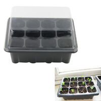 3pcs Flower Starter Tray 12 Cells Plant Germination Kit Garden Tool with Lid Box