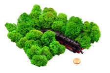 Muwse Islandmoos Köpfe 1-4cm 25g N Gras-grün handgereinigt Moos Büsche Bäume