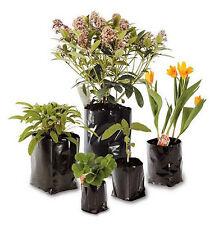 Unbranded Flower & Plant Pots Boxes