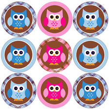 144 Pink and Blue Owl 30mm Children's Reward Stickers for Classroom, Parent