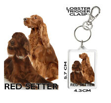 RED SETTER DOG KEYRING Can Be Personalised Red Setter Gift Mug Also Available
