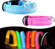 LED Safety Dog Collar 3 Mode Flashing Light up Glow in the Dark in medium🇬🇧