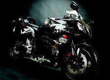 Flu Designs Honda Graffiti Sport Bike Graphic Kit Black/White CBR600RR 2009-2012
