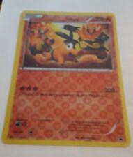 POKEMON PROMO CARD - JUMBO/OVERSIZED TEPIG (3D CARD) - 20cm X 14cm!!!