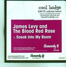(DA13) James Levy And The Blood Red Rose, Sneak Into My Room - 2012 DJ CD