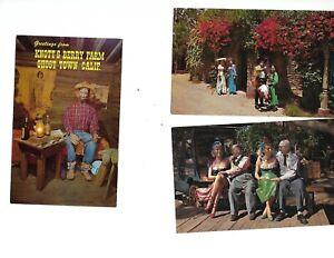 Lot 6 dif Vintage Knotts Berry Farm Postcards