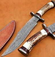 Handmade Damascus Steel 15 Inches Bowie Knive – Bone & Rose Wood Brass Handle