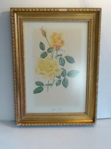 Signed (AMT)Giltwood Framed Painting of Suther's Gold Rose