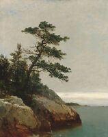 oil painting Kensett John F The Old Pine Darien Connecticut nice landscape art