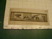 Original Engraving:1700's or 1800's - BIRDS EATING GRAPES nolli