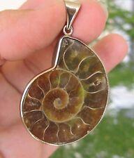 Colgante de ammonite fossil, espectacular y original, 4cmx3,5cm