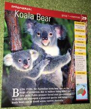 Endangered Animals Card - Mammal - Koala Bear #29