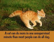 Metal Fridge Magnet Tabby Cat Do More One Moment Than People All Day Humor