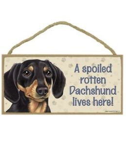 "A SPOILED ROTTEN DACHSHUND LIVES HERE!  5"" X 10"" WOOD DOG SIGN PLAQUE"