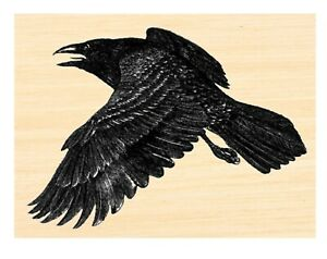 P124 Flying Crow Rubber Stamp