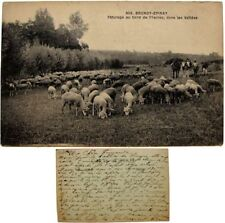 cpa 91 Brunoy Epinay sous Sénart pâturage bord de l'Yerres vallées moutons ovins