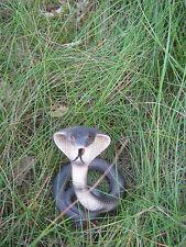 Snake Figure,Snake Cobra, Cobra , Reptile Ornament 1027294 A