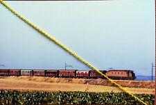Fotografia  ferrovia treno locomotiva FS E 428 linea ADRIATICA LESINA