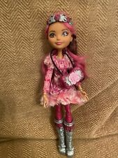 More details for ever after high- epic winter briar beauty doll