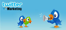 Twitter Marketing Training Guide + 10 Videos and Bonuses on 1 CD