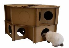 Rabbit Bunny Ferret Guinea Pig Chinchilla Kitten indoor cardboard maze toy Hutch