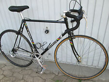 Gazelle AA Champion Special  Stahl Rennrad Stahlrahmen REYNOLDS 531 Vintage