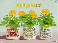 New 15x20cm Marigold Jam Jar Pot retro small metal advertising wall sign