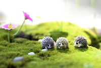 10 Bonsai Fairy Garden Micro Landscape Miniature Hedgehog Craft Home Decor