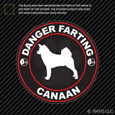 Danger Farting Canaan Sticker Decal Self Adhesive Vinyl dog canine pet
