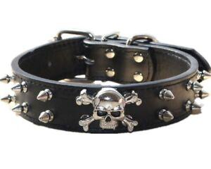Leather Skull Spiked Studded Dog Collar for  Medium & Large Dog Pit Bull Terrier