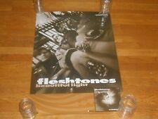 The Fleshtones beautiful light 21 x 32 Promo Poster orig 1993 peter buck ichiban