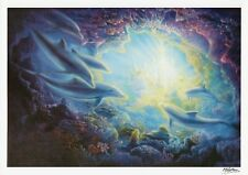 M. HORTON Signed 12x8 ORIGINAL Dolphin Art Print COA