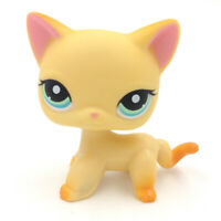 LPS COLLECTION LITTLEST PET SHOP 339 Short Hair Cat Kitty RARE Toy Action Figure