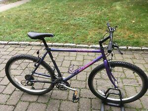 Specialized Rockhopper mens bike mans blue hybrid large road mountain bicycle