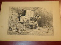 Karl BODMER (1809-1893) EAU FORTE ORIGINALE CHIEN ANIMAL FERME BARBIZON 1870